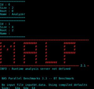 Console output when launching MALP on NPB